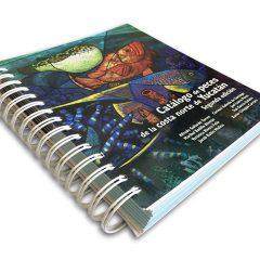 Catálogo De Peces De La Costa Norte De Yucatán